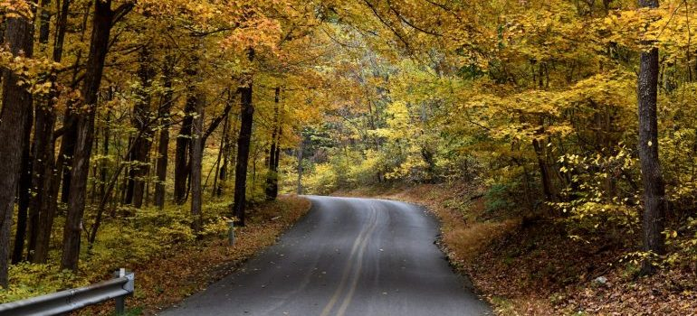 A road in a national park in MD