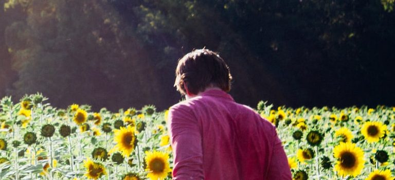 a person in a sunflower field
